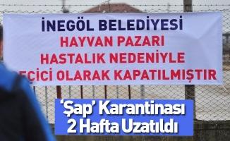 """""""Şap"""" Karantinası 2 Hafta Uzatıldı"""