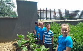 Öğrencilerin organik tarım heyecanı