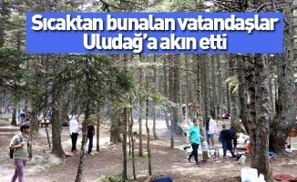 Sıcaktan bunalan vatandaşlar Uludağ'a akın etti