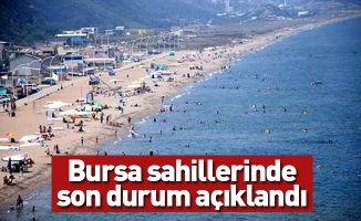 Bursa sahillerinde son durum açıklandı