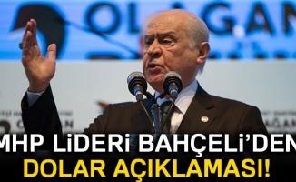 MHP Lideri Bahçeli'den dolar açıklaması