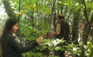 Öğrencilere ormanda tatbikî eğitim