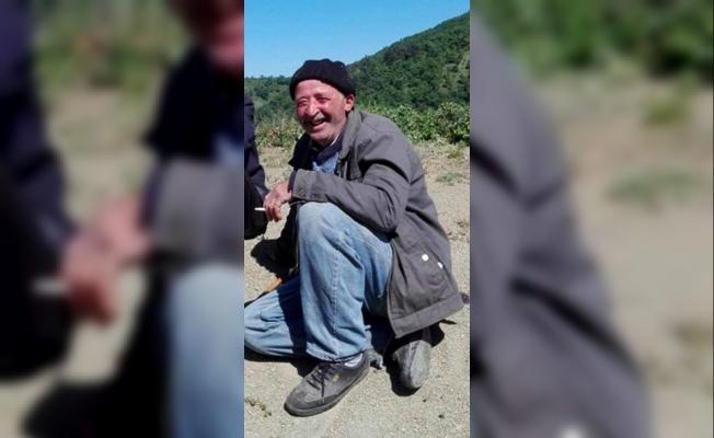 Zeytin ağacından düşen çiftçi öldü
