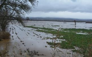 Karacabey'de tarım arazileri sular altında