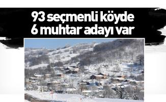 93 seçmenli köyde 6 muhtar adayı var