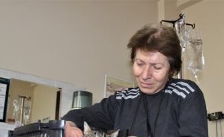 (ÖZEL) Diyabetli kedisini tedavi ettirmek için onlarca kilometre yol kat ediyor