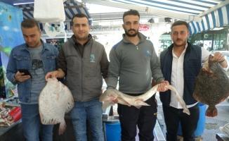 Av mevsiminin sonu yaklaşırken balık bollaştı