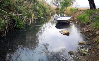 İznik'te çevre felaketi yaşanıyor