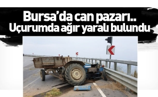 Bursa'da can pazarı...Uçurumda ağır yaralı bulundu