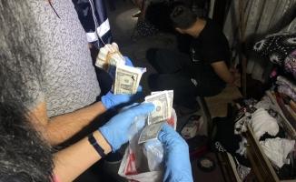 'Çekirge' operasyonunda 49 gözaltı
