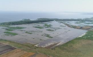 (Özel) Su altında kalan tarım arazileri havadan görüntülendi