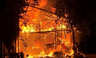Samanlıkta büyük yangın: 5 Büyükbaş hayvan telef oldu