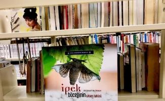 İpek böceğinin hayat hikayesi ABD'de