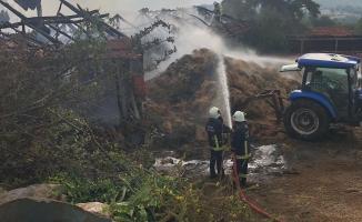 Yangını söndürmeye yardımcı olan 2 kişiye köpek saldırdı