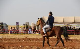 El Bab'da at yarışı coşkuyla izlendi