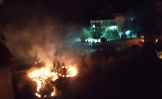 Ot yangını ormana sıçramadan söndürüldü