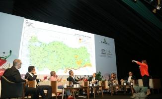 Turizm ve gastronomi yatırımcılarının gözünden Gaziantep
