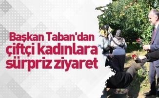 Başkan Taban'dan çiftçi kadınlara sürpriz ziyaret