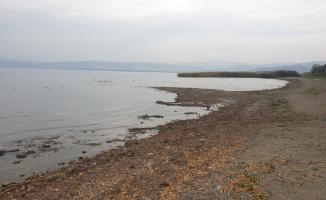 Kuraklık sebebiyle İznik gölünde adacıklar oluştu