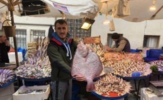 2 kilo 800 gram kalkan balığı 450 liraya alıcı buldu