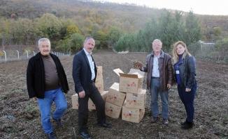 Nilüfer'de meyve yetiştiriciliği gelişecek