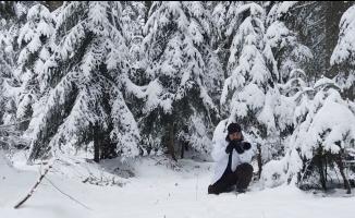 Karla kaplı ormanda drone ile geyikleri böyle görüntülediler