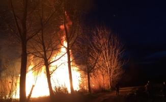 İznik sahilinde 10 dönüm sazlık alan alev alev yandı