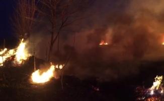 İznik'te sazlık alanda çıkan yangın kontrol altına alındı
