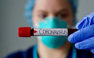 Koronavirüs nedeniyle hayatını kaybedenlerin sayısı 108 oldu