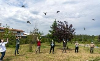 Bursa'da tedavileri tamamlanan 7 şahin 2 çakal doğaya bırakıldı