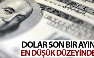 Dolar 1 ayın en düşük düzeyinde