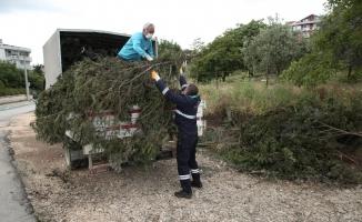 Nilüfer'in parklarında hummalı çalışma