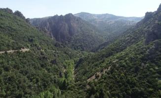 Bursa'nın tabiat harikası kanyonuna SİT düzenlemesi