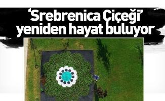 'Srebrenica Çiçeği' yeniden hayat buluyor