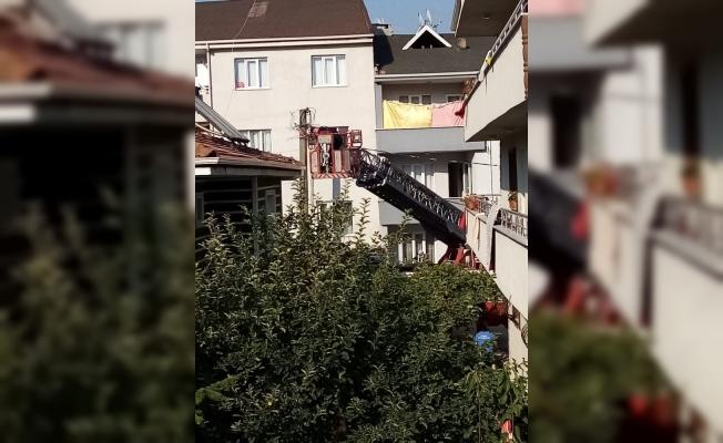 İnegöl'de çatıya sıkışan ebabil kuşunu itfaiye kurtardı