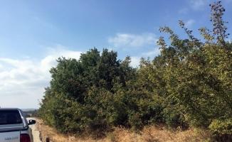 Mudanya Has Mahallede mezarlık isyanı