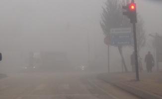 Yoğun sis hayatı felç etti