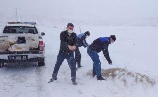 Karacabey'de karla mücadele