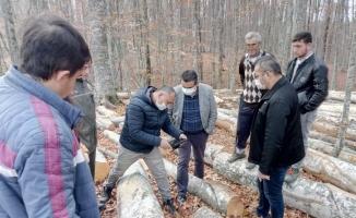 Orman İşletmesi Mustafakemalpaşa'ya nefes oldu