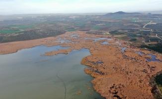 (Özel) 2600 yıllık geçmişi olan Uluabat Gölü'nde kuraklık tehlikesi