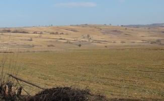 Tehlike çanları çalıyor, çiftçi kara kara düşüyor