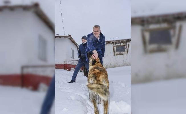 Başkan Özkan'ın hayvan sevgisi