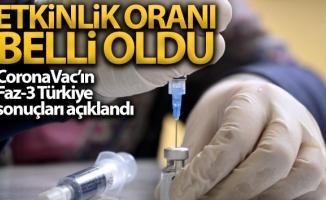CoronaVac isimli Covid-19 aşısının Faz-3 Türkiye sonuçları açıklandı