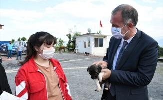 Sahiplenilen Hayvanların 1 Yıllık Muayenesi Ücretsiz Yapılıyor