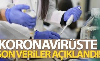 Türkiye'de son 24 saatte 11.302 koronavirüs vakası tespit edildi