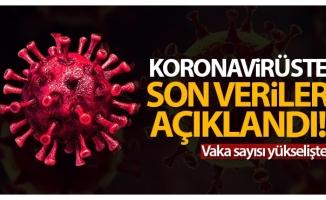Türkiye'de son 24 saatte 11.770 koronavirüs vakası tespit edildi