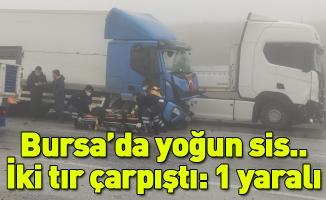 Bursa'da yoğun sis...İki tır çarpıştı: 1 yaralı