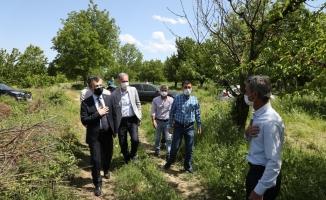 İnegöl tarımı el birliği ile şahlanıyor