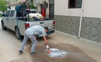 Osmangazi'den haşerelere karşı ilaçlama