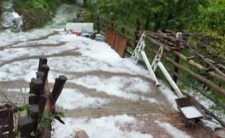 Bursa'da kestane ağaçları doludan zarar gördü
